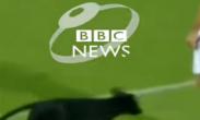 ძაღლი, რომელიც გორის სტადიონზე შევარდა, BBC-ზე მოხვდა