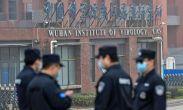 ჯანდაცვის მსოფლიო ორგანიზაციის ინფორმაციით, ჩინეთის ქალაქ უხანში 2019 წლის დეკემბერში კორონავირუსის 13 მუტაცია არსებობდა