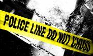 ლაგოდეხში პოლიციამ კანაფის დათესვა-მოყვანა-კულტივაციის ბრალდებით 2 პირი დააკავა