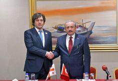 ირაკლი კობახიძე თურქეთის რესპუბლიკის დიდი ეროვნული ასამბლეის თავმჯდომარეს შეხვდა