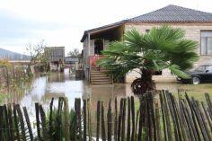 სამტრედიაში ძლიერი წვიმის შედეგად საცხოვრებელი სახლები დაიტბორა