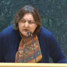"""ადა მარშანია: აქტიურად ვიმუშავებთ, რომ აიკრძალოს """"ენდიაის"""" კვლევები საქართველოში"""